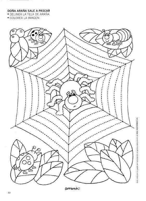 spider  trace worksheet (1)