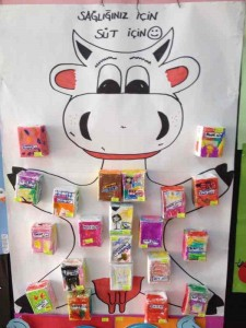 cow bulletin board