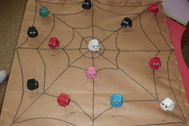 egg carton spider bulletin board