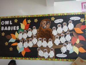 Owl Babies classroom