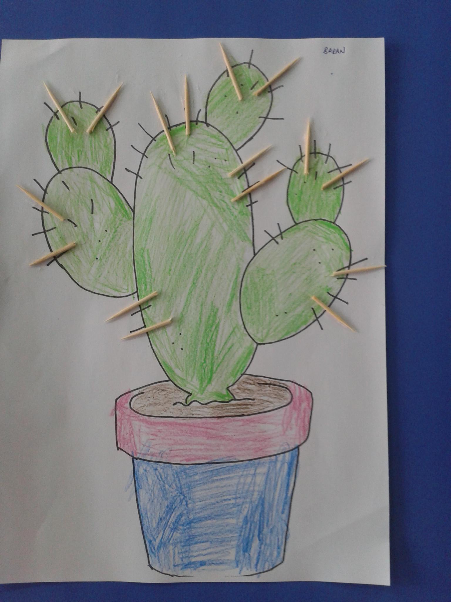 cactus-craft (2)