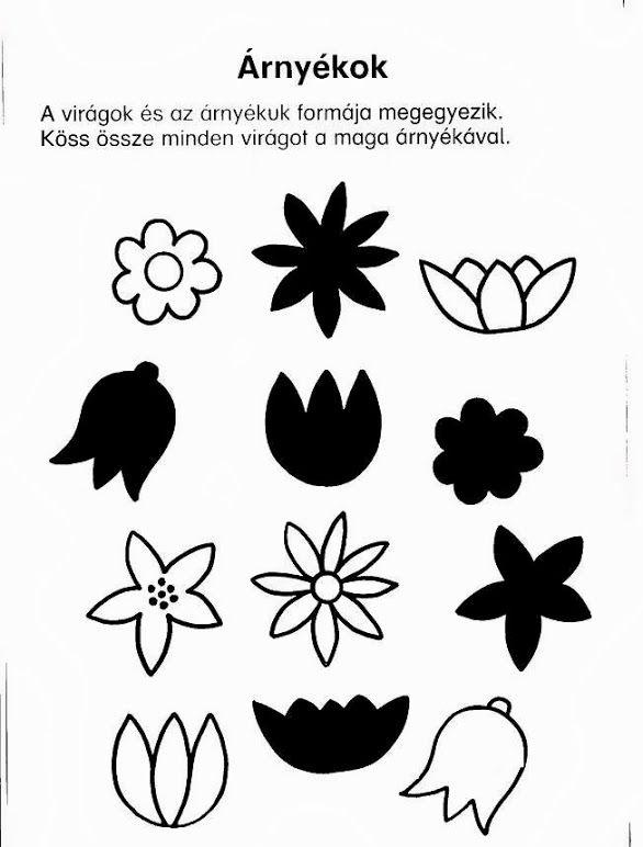 flower shadow worksheet