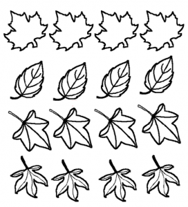flower template coloring (1)