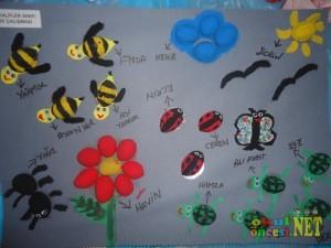 walnut craft idea for kids