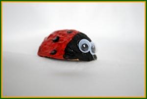 walnut ladybug craft