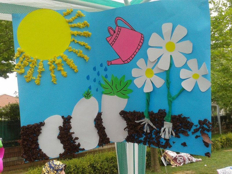flower life cycle craft_800x600