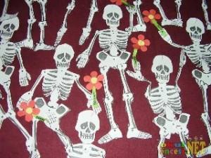 skeleton craft_320x240