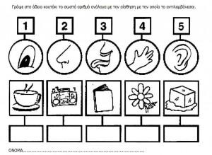 5 senses worksheet for kids (12)