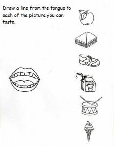 5 senses worksheet for kids (2)