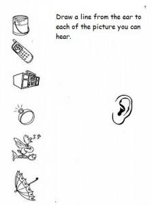 5 senses worksheet for kids (5)