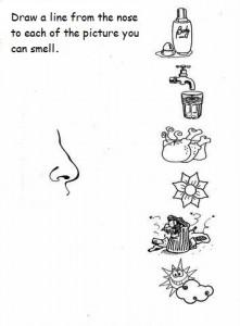 5 senses worksheet for kids (6)