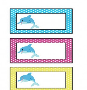 dolphin name card