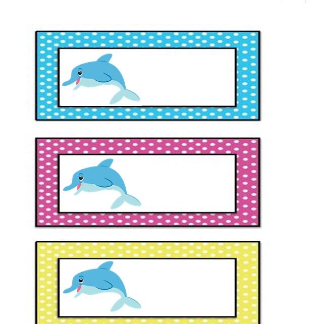 dolphin name card