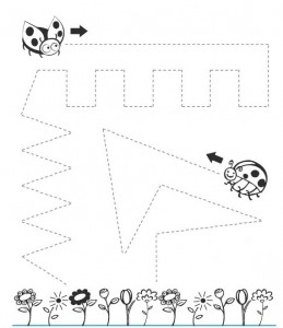 ladybug trace line worksheet