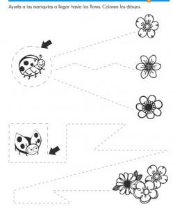 ladybug trace line worksheets (2)
