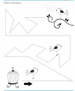 printable bird trace worksheet