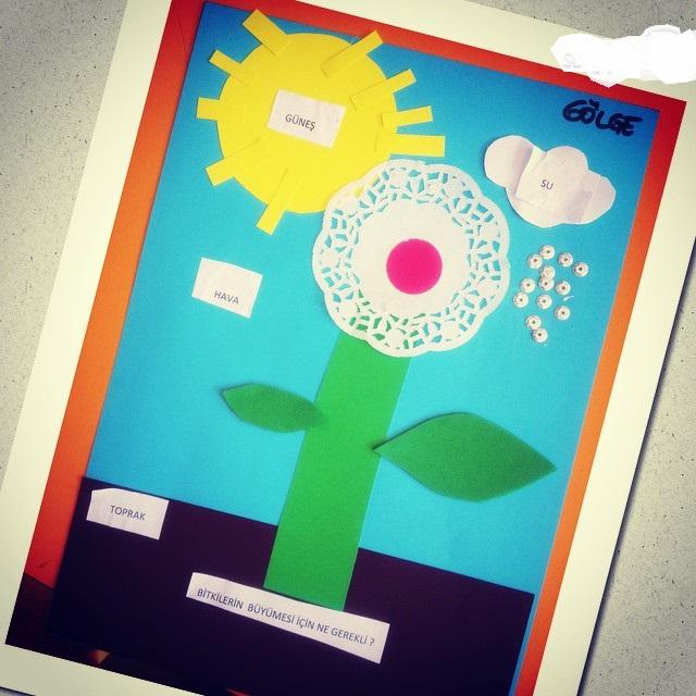 flower_craft (2)