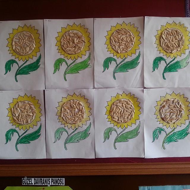 sunflower craft idea for kids
