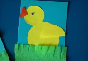 chick craft  (1)