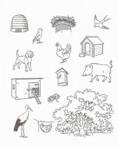 free animal habitat worksheet for kids (2)