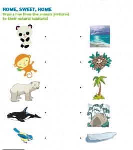free animal's habitat worksheet