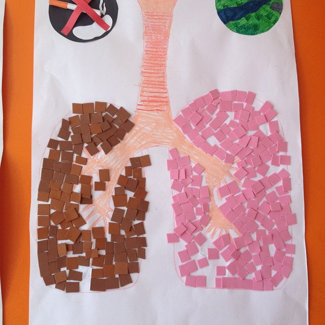 lungs craft