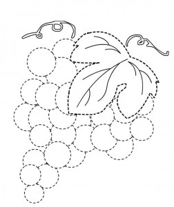 grapes trace line worksheet for kids (2)