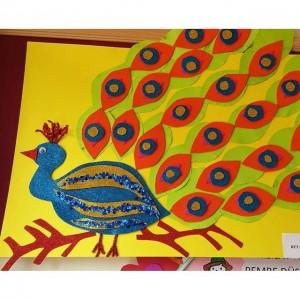 peacock bulletin board (2)