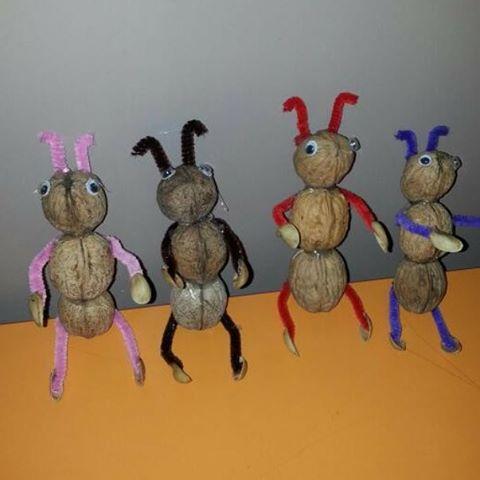 walnut shell ant craft