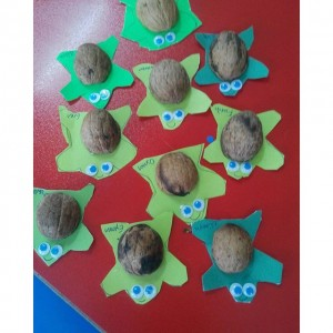 walnut shell turtle craft (2)