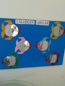 cd fish craft