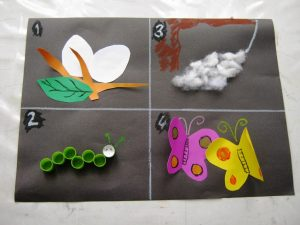 free life of cycle butterfly craft