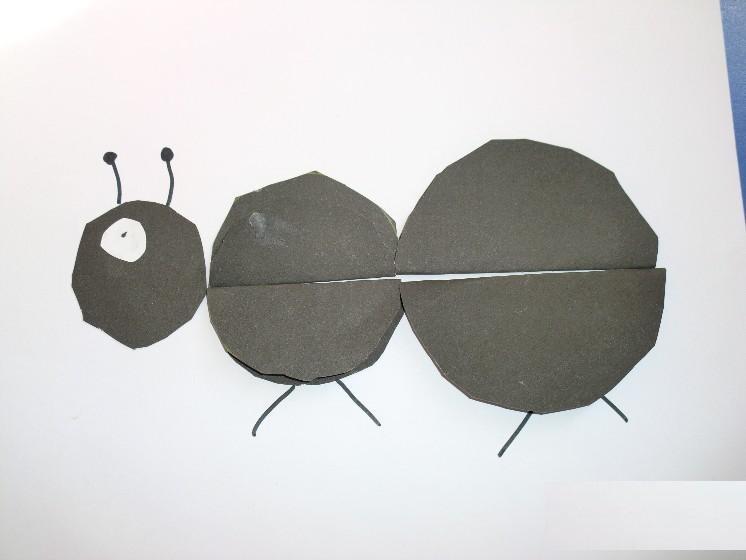 circle ant craft